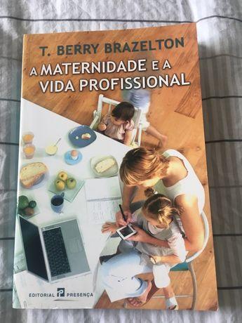Livro - a maternidade e a vida professional