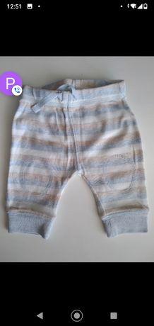 Dresy next  spodnie