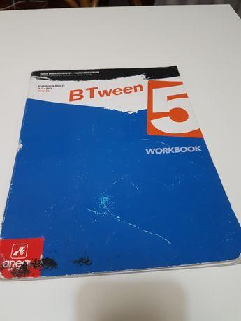 BTween 5 ensino básico