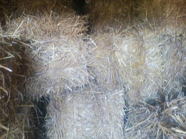 Тюки соломи пшеничні
