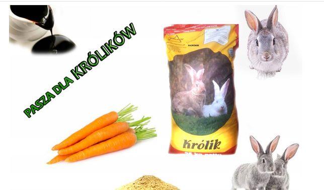 KRÓLIK 25 KG Pasza karma dla królików granulat HIT