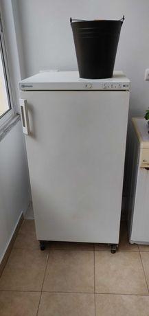 Vendo Arca Congeladora Bauknecht 60x60x120cm (valor negociável)