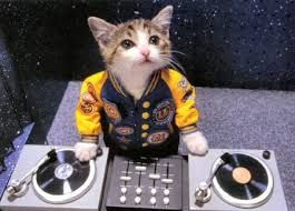 DJ (Диджей) Ksenia предлагает музыкальное оформление.