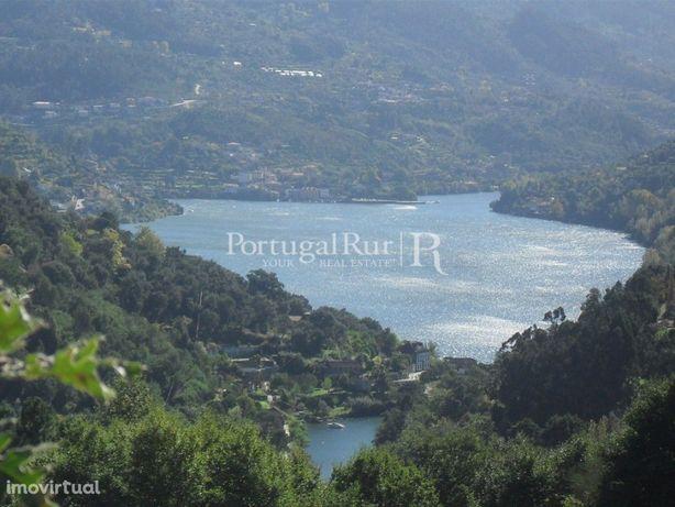 Quinta com ruínas e vistas do rio Douro