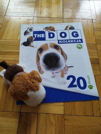 pluszak piesek the dog nr 20 Beagle