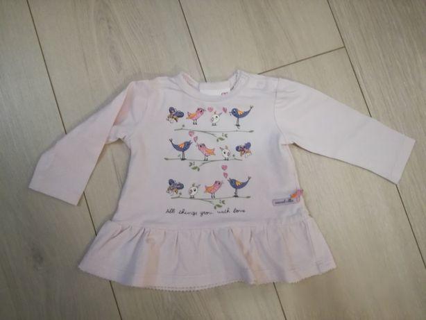 koszulka / bluzka na długi rękaw Coccodrillo 56 cm