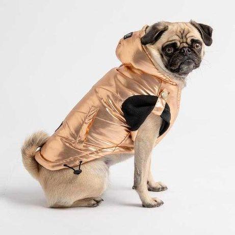 Casaco para cão rose gold, novo