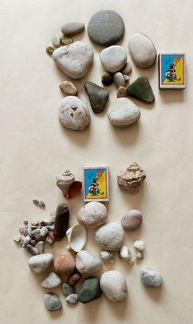Камни, ракушки для аквариума