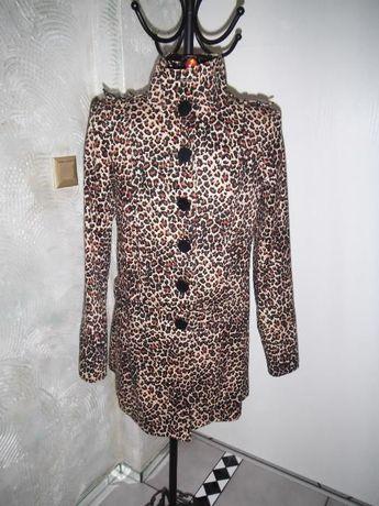 Wiosenny płaszcz w panterke New Look