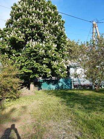 Продам дом в Губинихе улица Осеняя 9.