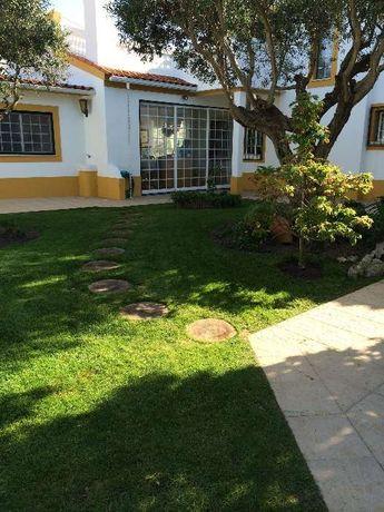 Serviços de jardinagem e limpeza de terrenos margem sul e grandelisboa