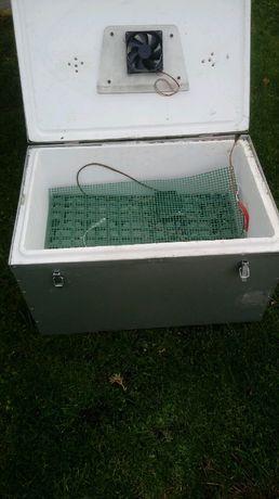 Inkubator półautomatna 80 jajek kurzych