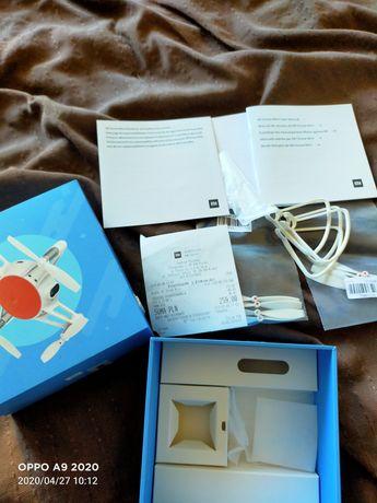 Mi Drone Mini dron