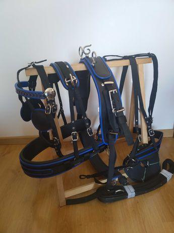 Arreios de Atrelagem Maratona Charrete  - Novos A Estrear Para Cavalo