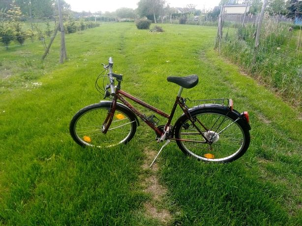 Rower MTB Voyager