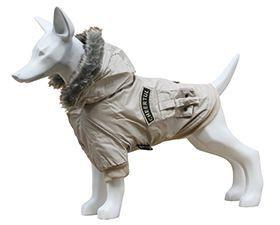 Gabardine Cão Freedog 25 cm