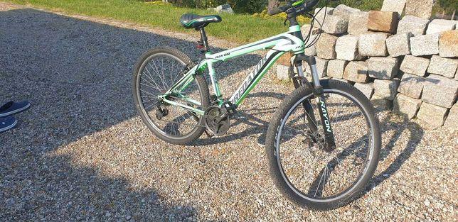 Rower Predator Rayon koła Roz. 26 Rama roz. 16