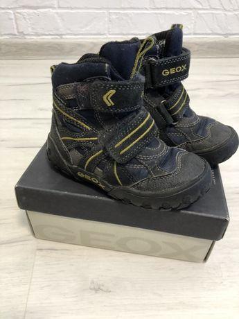 Демисезонные ботинки Geox (Ecco)