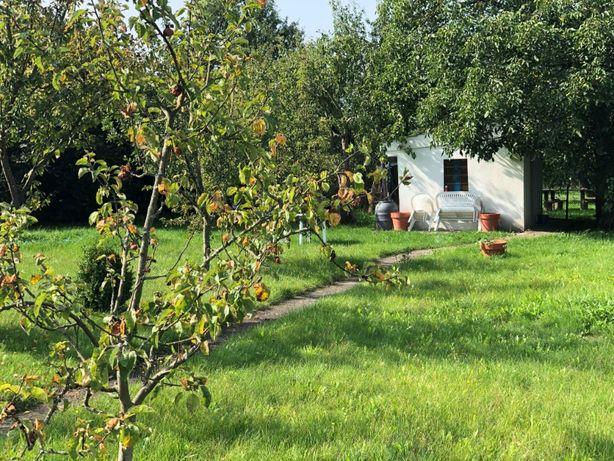 Ogródek działkowy ROD / Działka rekreacyjna z domkiem w Gryficach