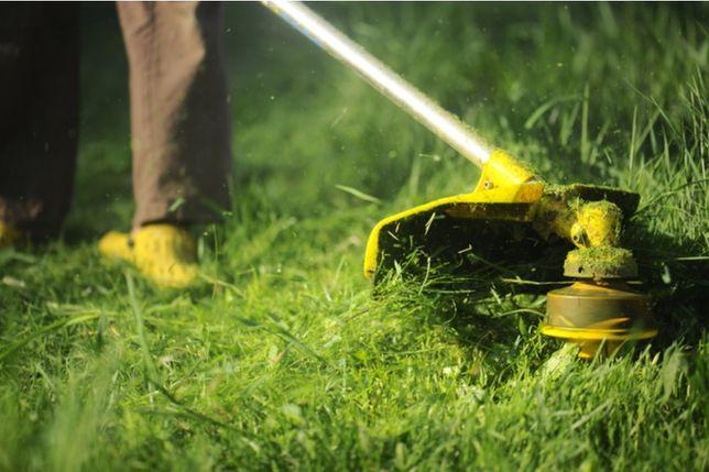 Koszenie trawy, trawników