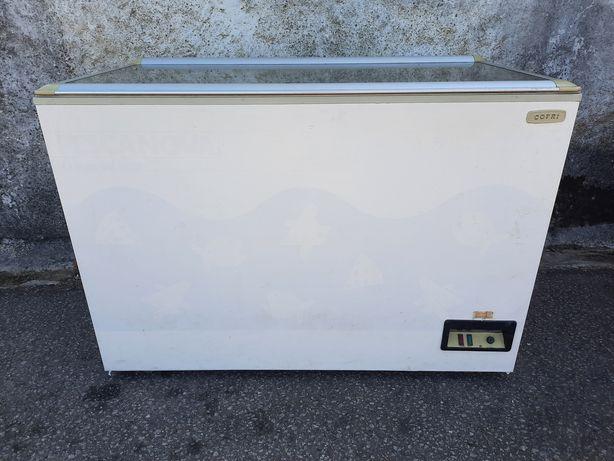 Arca expositora de 410 litros com entrega