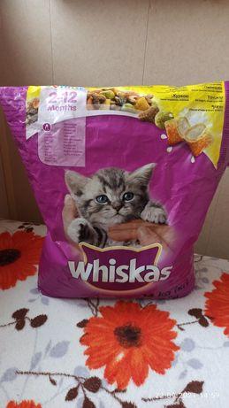 Продам корм для кошек Whiskas Junior