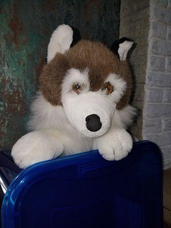 Іграшка мяка-собака Хаскі