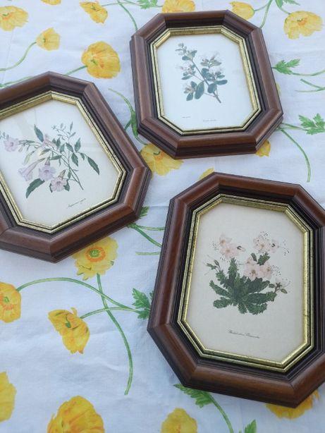 3 Quadros com motivo de flores