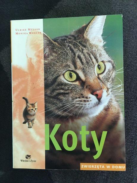 Książka Koty - Zwierzęta w domu (Poradnik)
