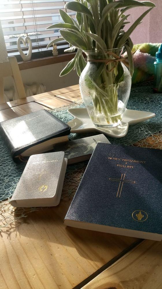 Biblia - Ewangelie, Dzieje Apostolskie, Listy Apostołów, Apokalipsa