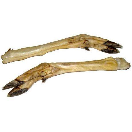 Noga sarny - naturalny gryzak dla psa