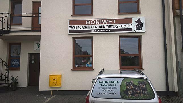 Strzyżenie, pielęgnacja psów i kotów (WYSZKÓW - NOWY LUBIEL)