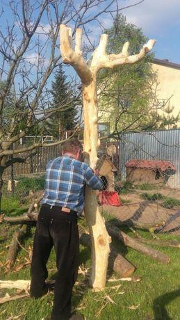 Drzewo z sadu owocowego wędzenie kominek.