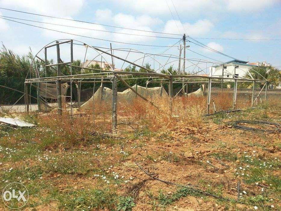 Estrutura Estufa Agrícola