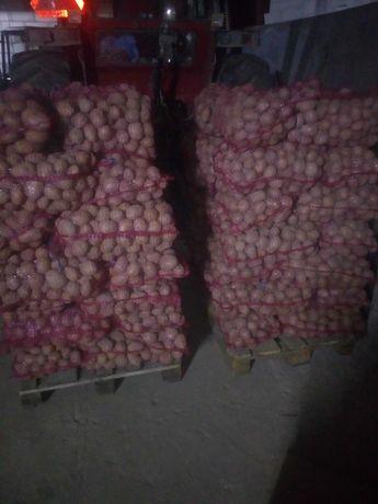 Ziemniaki Mazur.