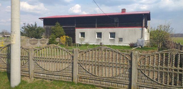 Zadbany dom w Dolinie Baryczy. Młodzianów.