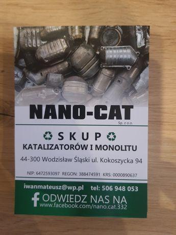 Skup katalizatorów złota i srebra  Wodzisław Śląski