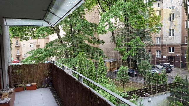 Siatka balkonowa dla kota. Siatka na balkon Siatka przeciw gołębiom