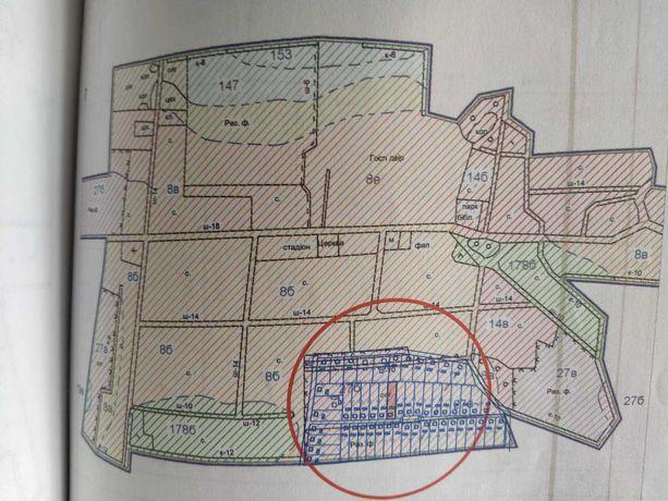 Приватизована земельна ділянка 0,25 га в с. Муравище