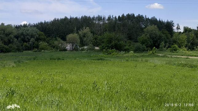 Продам участок в с.Барахты в Киевской обл. 30 км от Киев 33 сотки