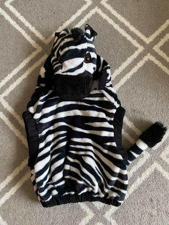 Strój zebra 5-6 lat