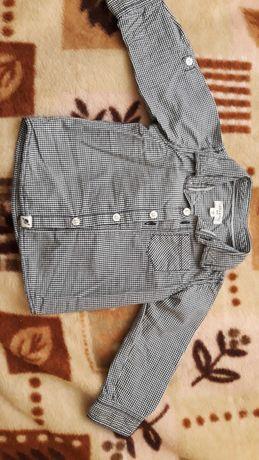 Elegancka koszula 74 Reserved