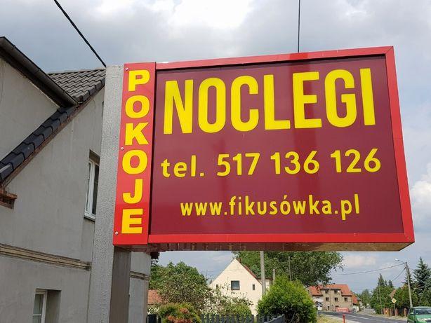 Noclegi dla firm Fikusówka Opole