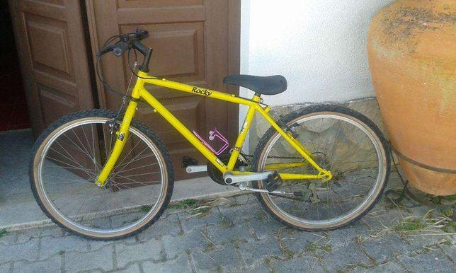 Bicicleta Esmaltina usada