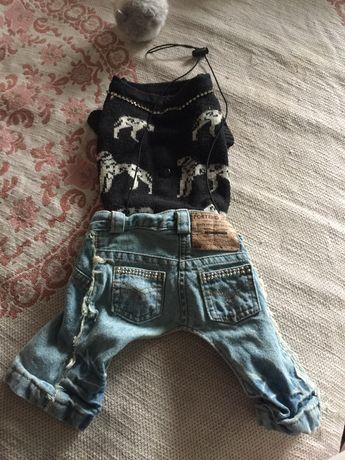 одежда вещи свите джинсы штаны