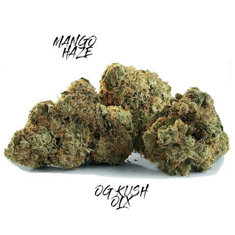 10 Gram MANGO HAZE 45% CBD Susz Marihuana Legal Wyprzedaż! Małe Topki