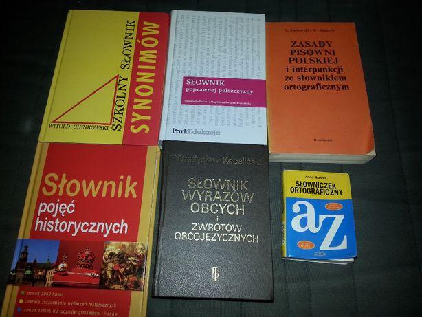Słowniki różne 6 szt.