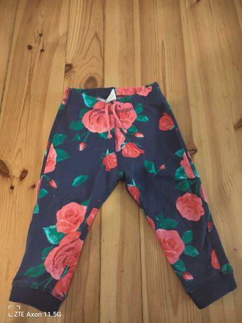 Spodnie dresowe H M