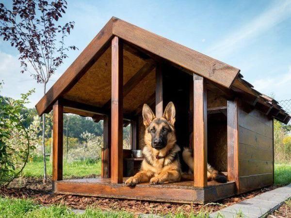 будка для собаки,собача будка, собачья буда