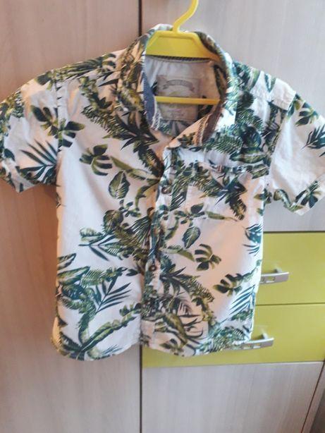 Koszula Tu rozmiar 116